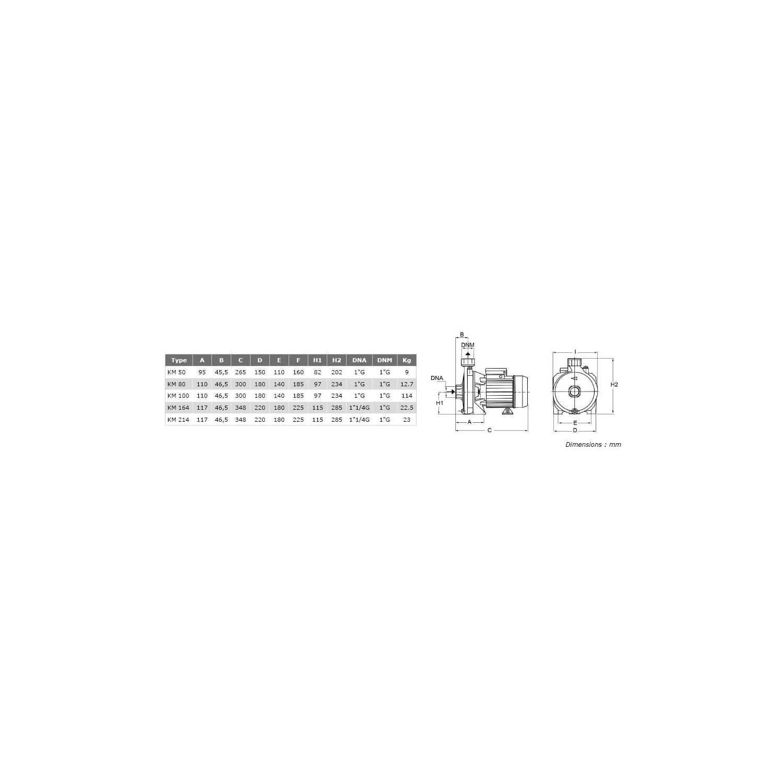 """Pompe de surface centrifuge 380V - 0.55kW - 1""""1/2"""